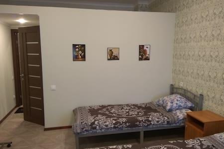Гостевой дом на Боровой - Sankt-Peterburg