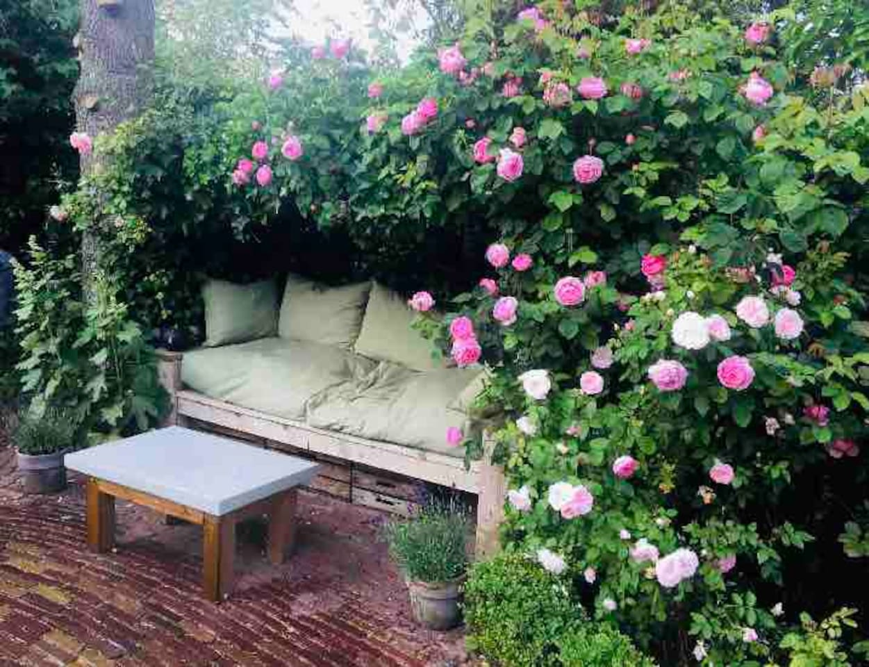 Back garden with romantic seat