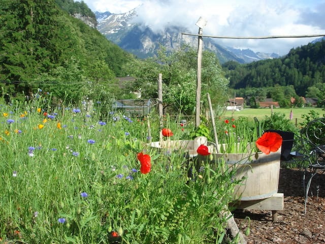 Bed and Breakfast Dunkel Blaue Maus - Meiringen - Bed & Breakfast