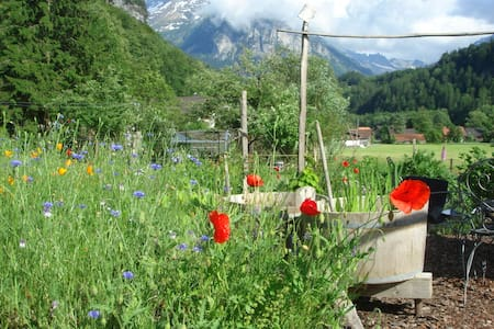Bed and Breakfast Dunkel Blaue Maus - Meiringen
