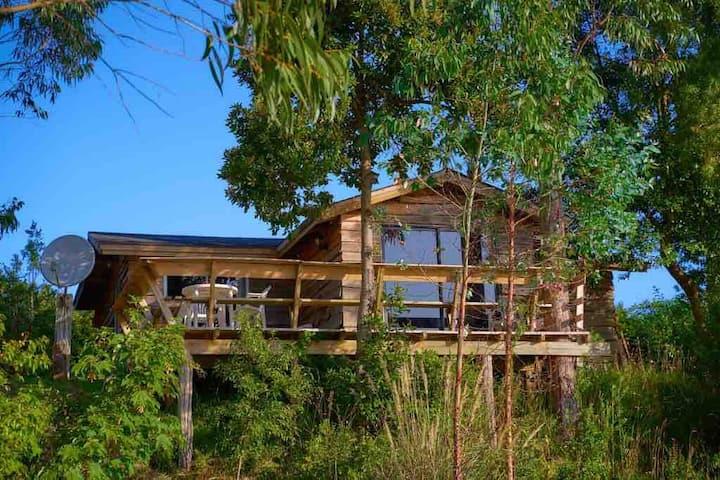 Cabaña con acceso a lago, Puerto Varas