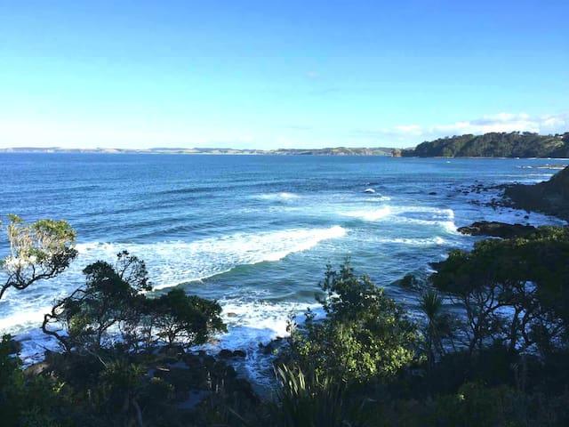 Calypso Paradise – Oceanview Home