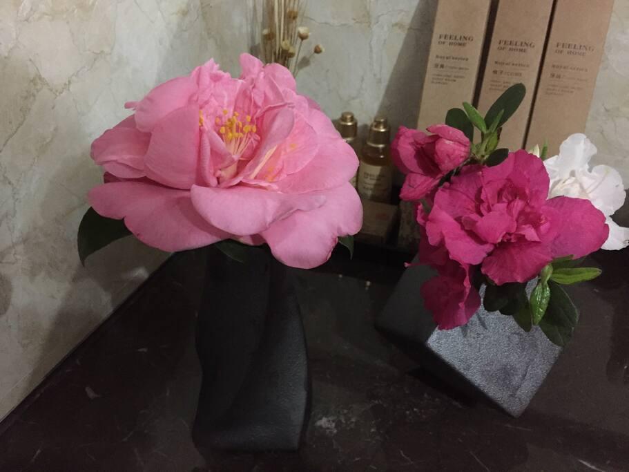 每周不同的鲜花点缀着房间~让爱花的你喜笑颜开……^_^
