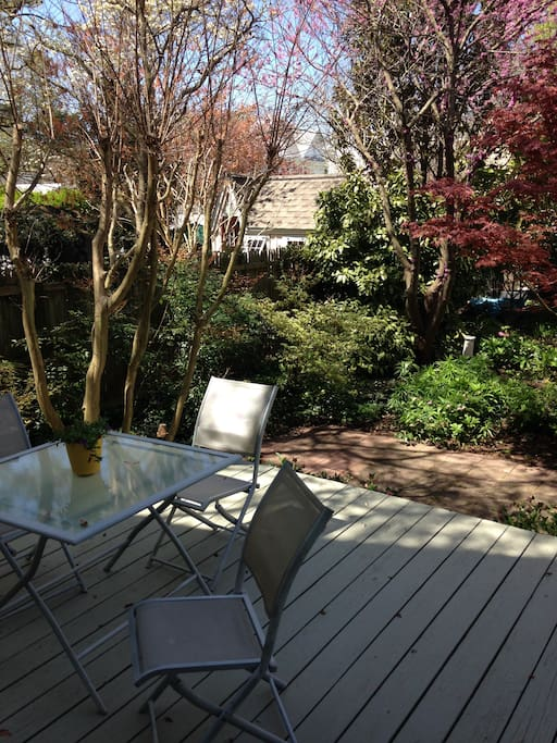 Outdoor dining possible on deck in luscious enclosed garden.