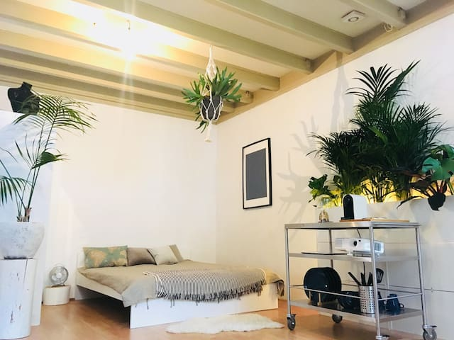 City Center Jungle apartment (15 min, Amsterdam)