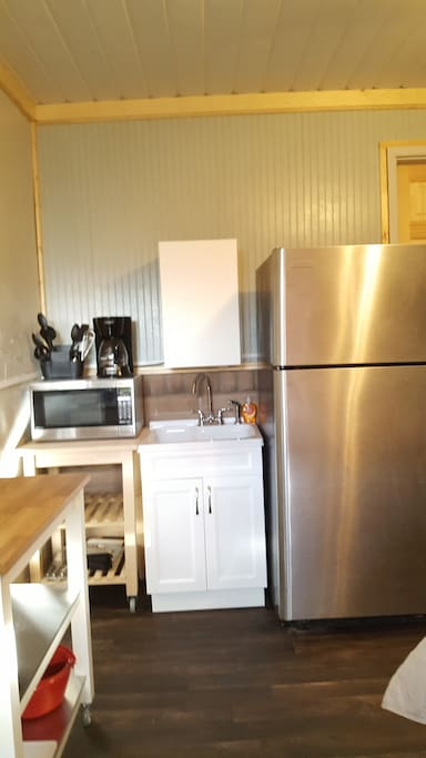 Large Fridge with Kitchen Basics