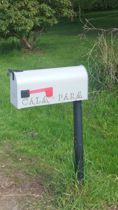 Our mail box