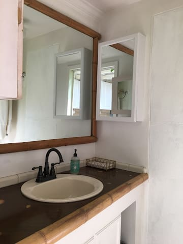 Shared bathroom with one other person. Toilet on left, shower to right. Plenty of storage