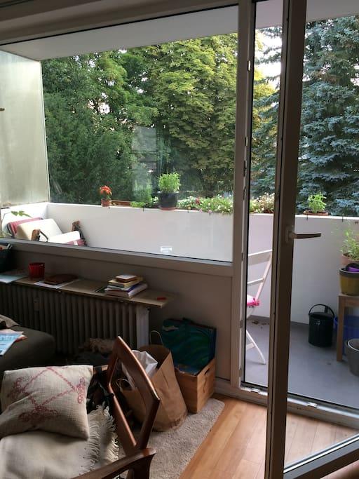 zentral und gr n wohnen in oldenburg appartementen te huur in oldenburg niedersachsen duitsland. Black Bedroom Furniture Sets. Home Design Ideas
