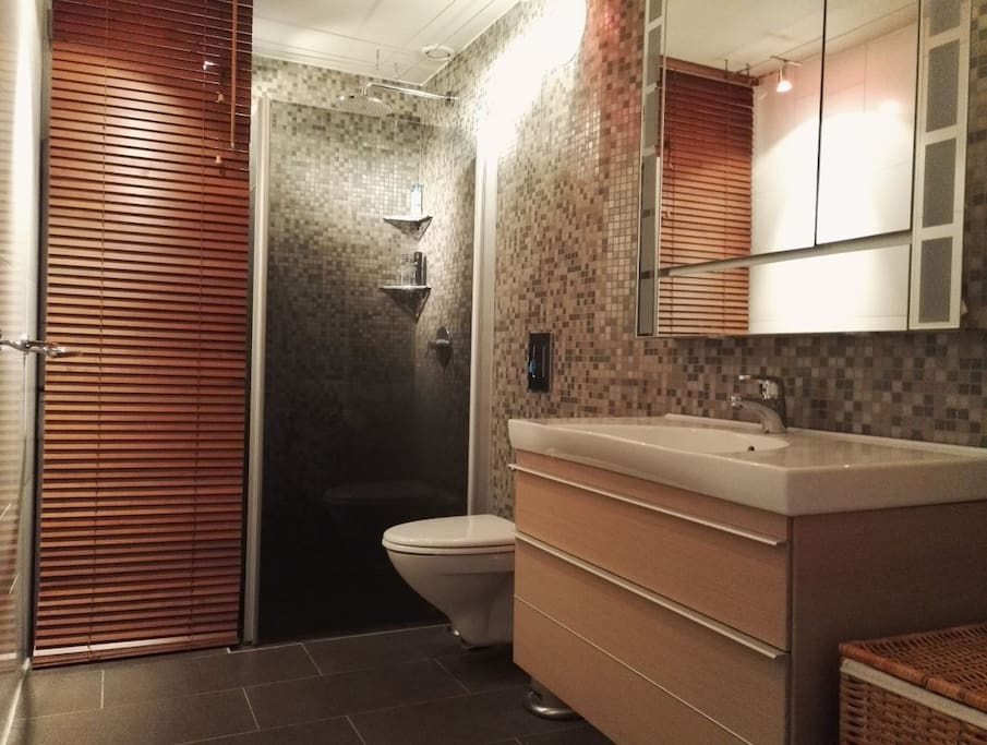 Bathroom is recently remodelled.