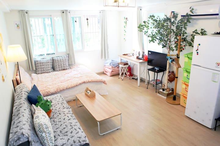 New Open Sale! Cactus House @ 4Min walk Dongdaemun