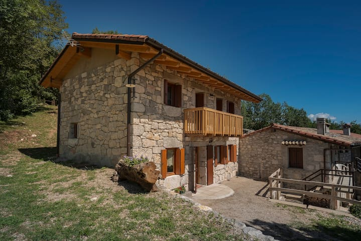 House Laure -where the Griffons fly - Forgaria Nel Friuli - Casa