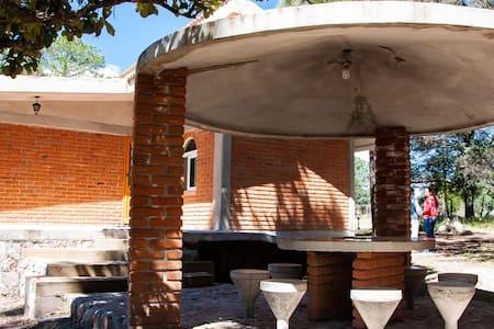 Cabaña #20 Madroño