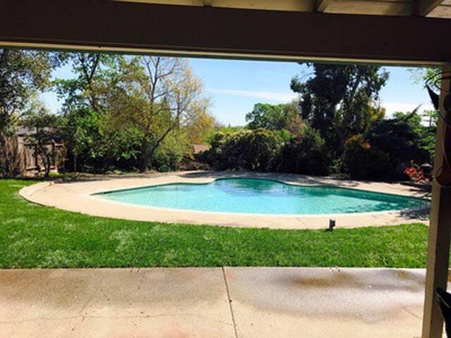 Huge backyar,  huge pool and Spa