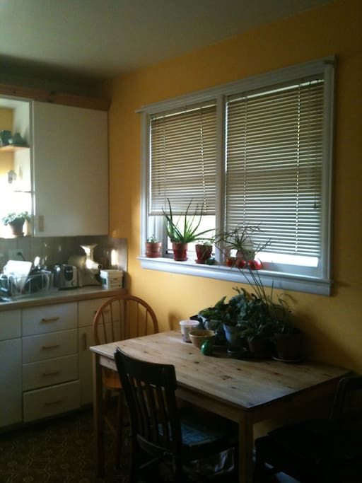 The sunny kitchen where you can have your  coffee or tea
