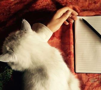Idyllic Writing, Meditation Retreat - Roslin - Other