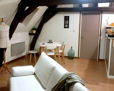 Nice flat under roofs - Arras - Apartment