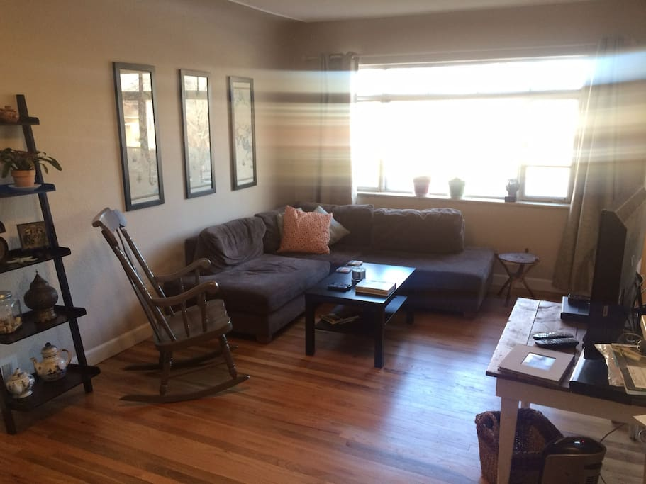 Living room with comfortable couch and HD tv and dvd player