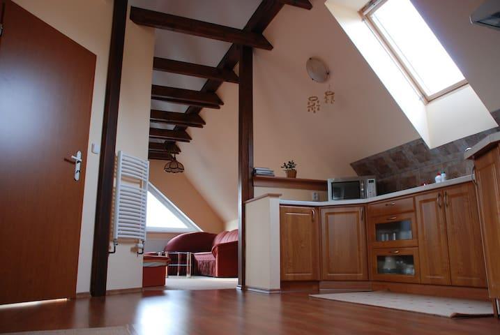 Kompletně vybavený apartmán - 64 m2 - Veltrusy