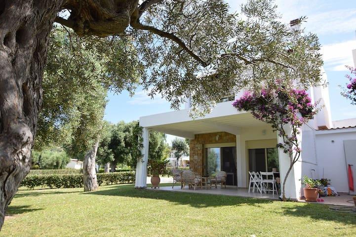 Villa Anemi - GR - Villa