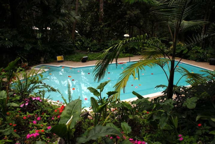 Charming home & luscious gardens - San Antonio del Tequendama - House