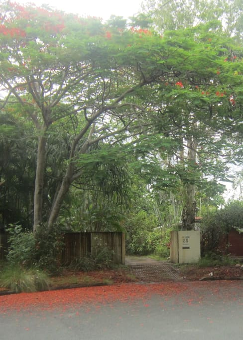 Street view of entrance to house