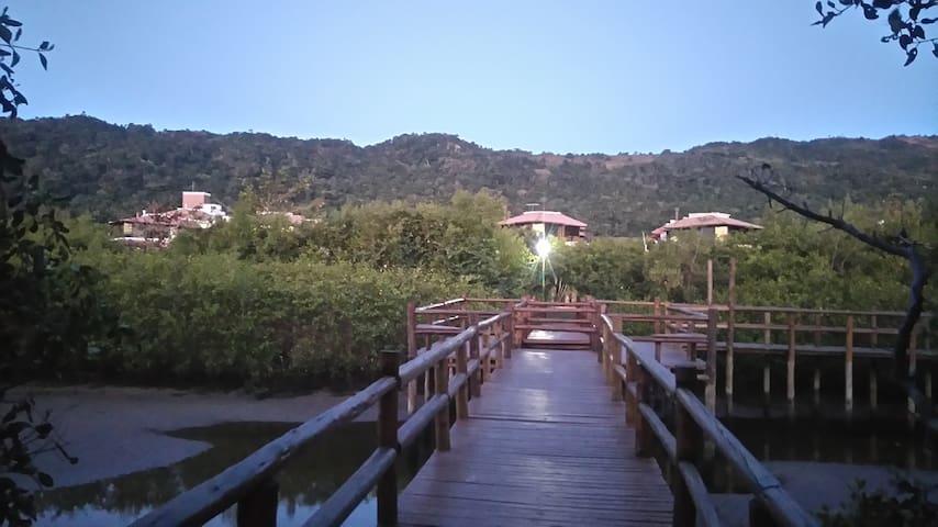 ponte rústica sobre o mangue, rico berçario da vida marinha, em caminho para a praia