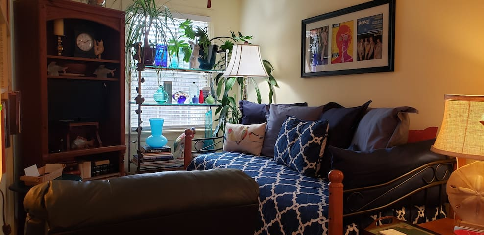 Cozy twin daybed