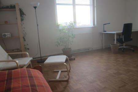 Zimmer 1 /Bahnnähe/Parken/Donaunähe