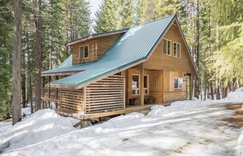 Pine Top Cabin in the Woods