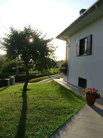 Quinta da Olaia - Oliveira de Azeméis - Talo