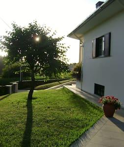 Quinta da Olaia - Oliveira de Azeméis