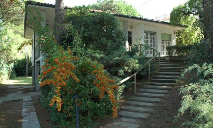 Villa Giove - spacious villa with garden