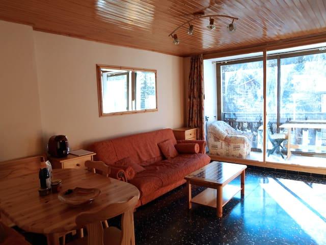 Appartement à 150 mètres des pistes - Hautes-Alpes - Daire