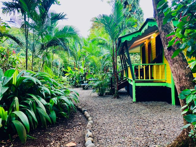 Casa Amarilla Caribbean House