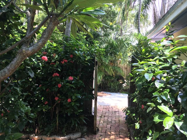 Tropical Setting in Coconut Grove/Miami Studio