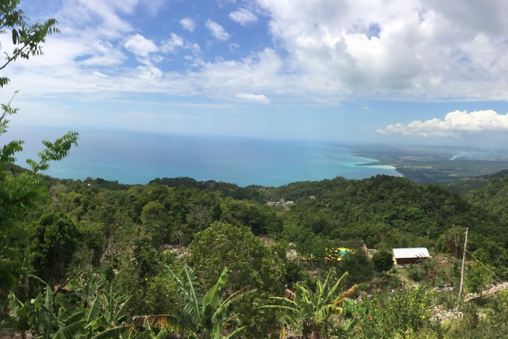 The view from the top of our Botanical Retreat