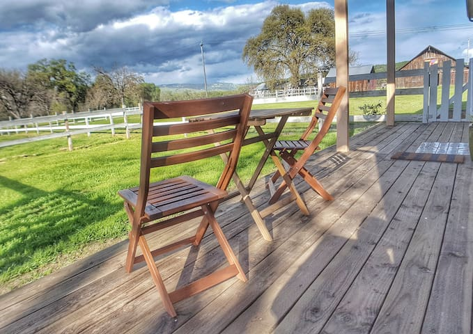 Your private front deck and fenced yard with views of the orchard and neighboring vineyard beyond.