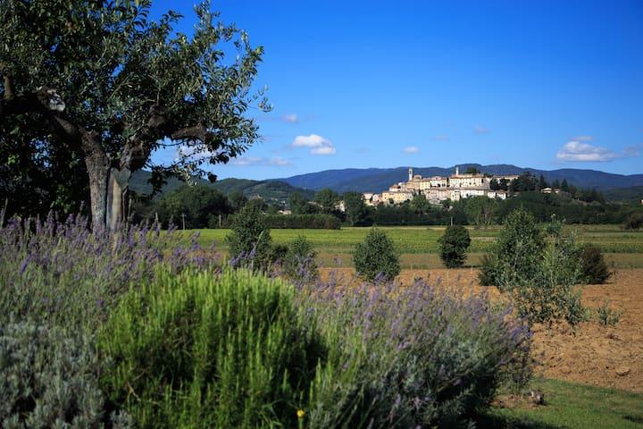 Monterchi casa con orto-giardino - Monterchi - House