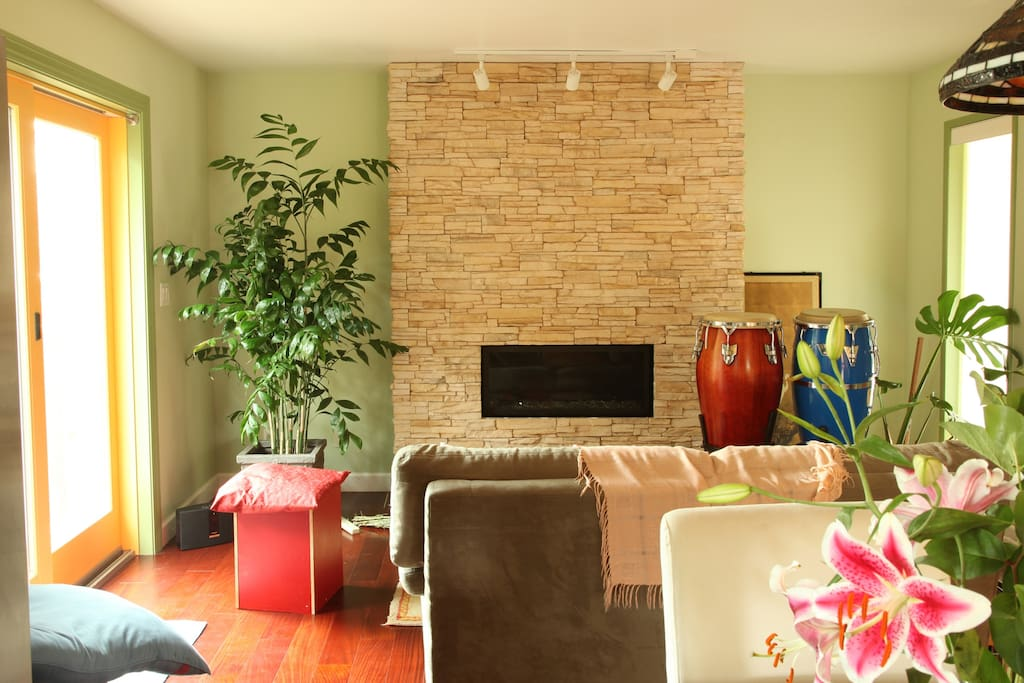 Living room / Gas fireplace /w remote control