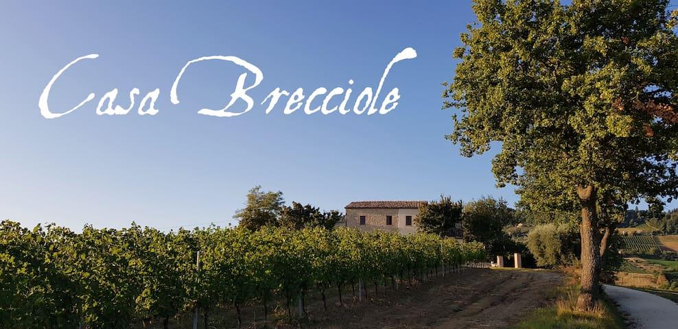 Casa Brecciole-Familienurlaub im Herzen der Marken