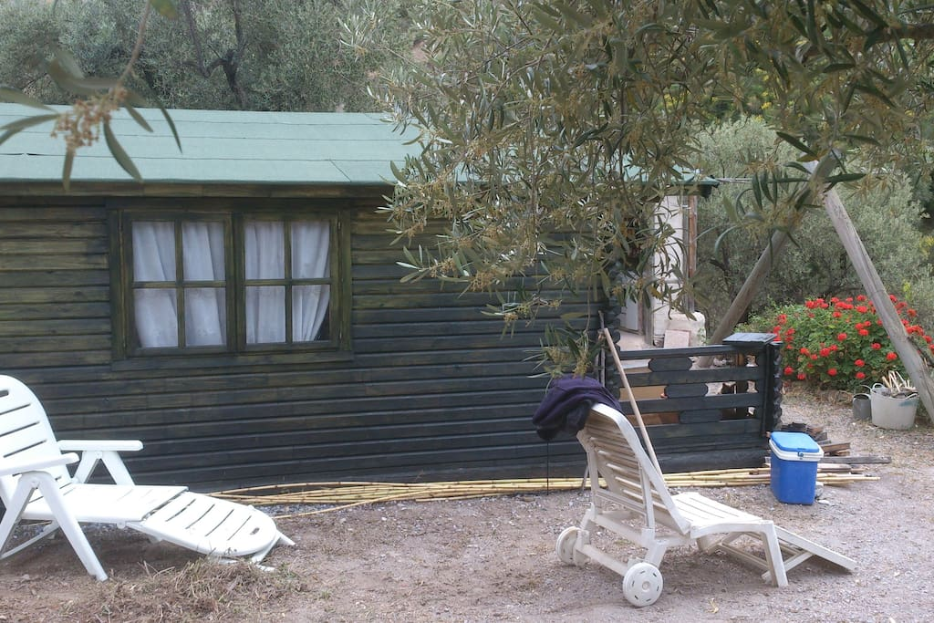 Cabin through the olive trees
