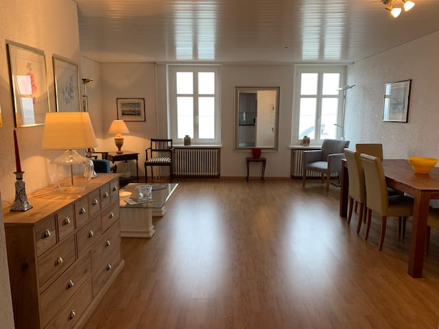 Beautiful business apartment at lakeside SG