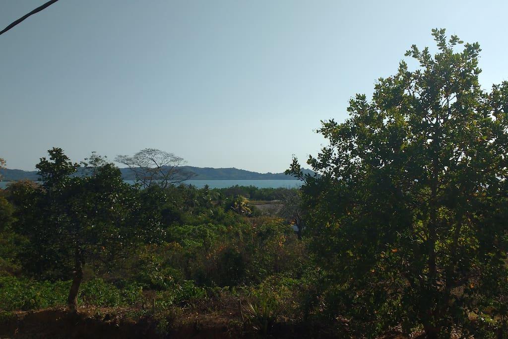 La vue depuis la cabane