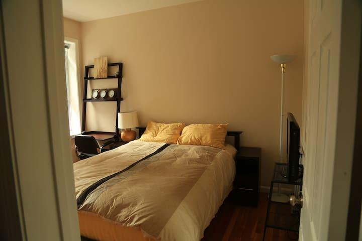 basic room in Cambridgeport