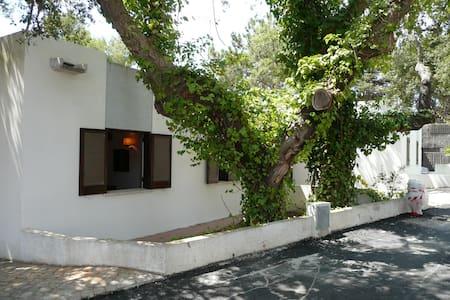 Suite nº 3 Villa Baron of Culcreuch sailing beach - 阿爾布費拉