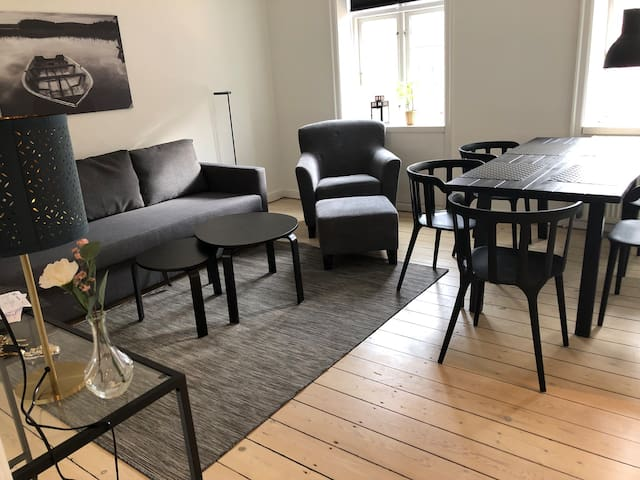 R32.2 bedroom apartment in the heart of Cph