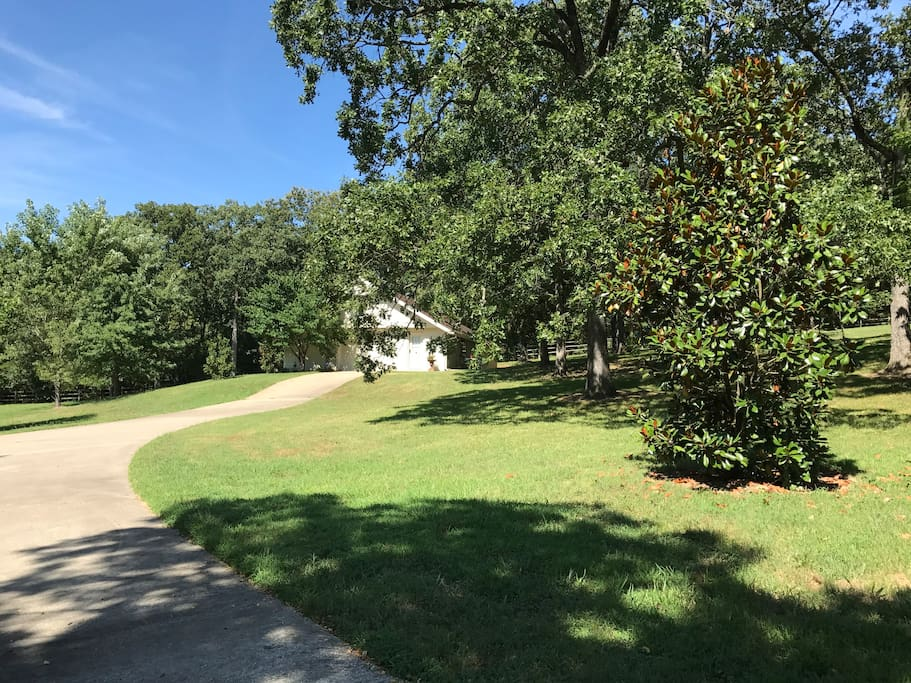 Weekly Rooms For Rent Fayetteville Ar