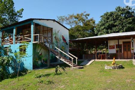 Hotel Tinamú Birding Nature Reserve - Manizales - Szoba reggelivel