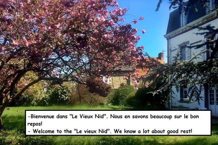 """""""Le Vieux Manoir"""" means """"The Old Nest"""""""